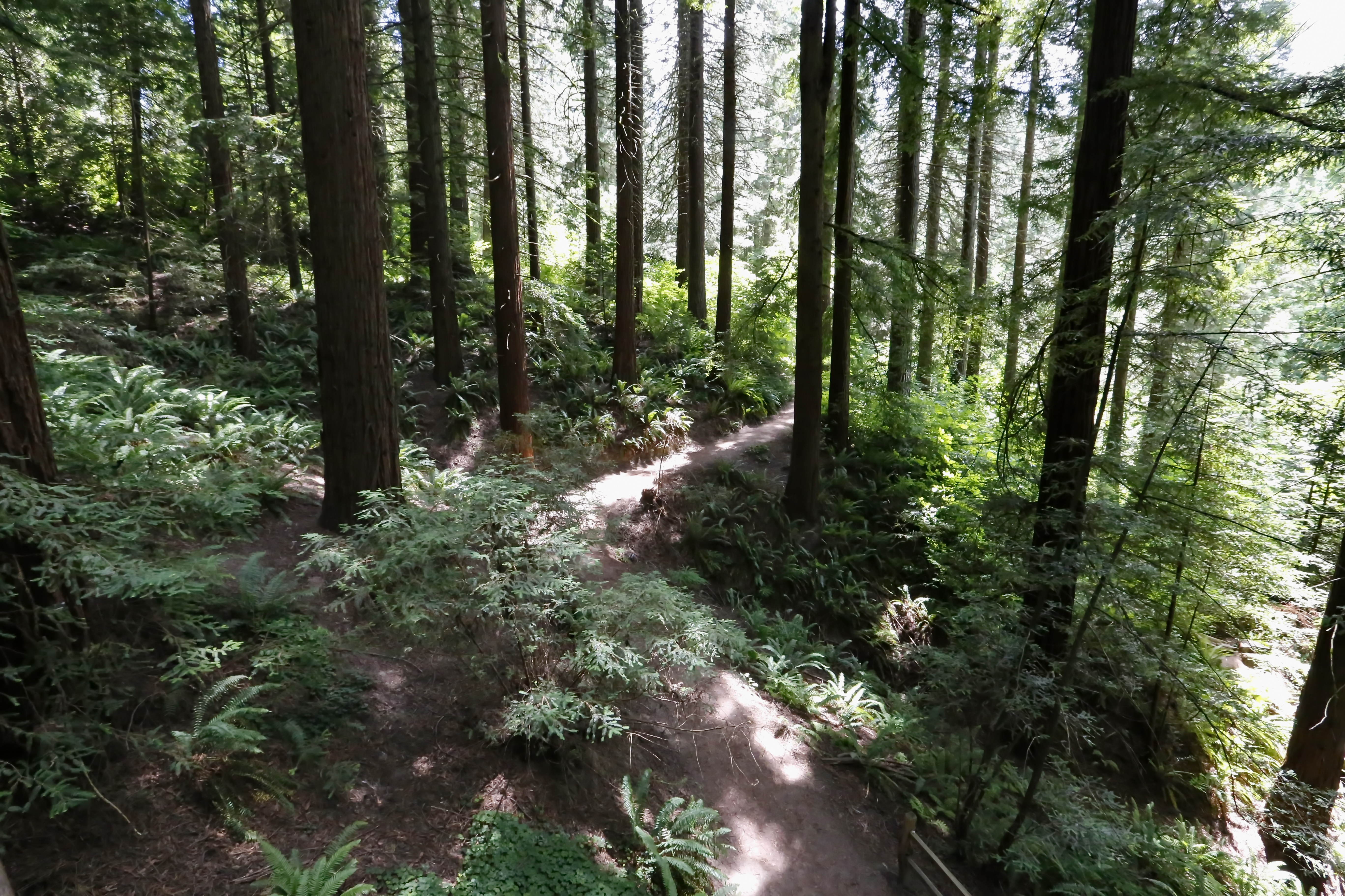 Guided Hike – Hoyt Highlights